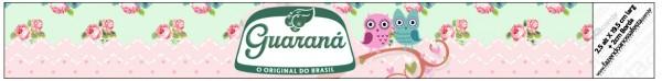 Rótulo Guaraná Caçulinha Corujinha Vintage Rosa e Verde