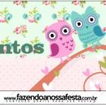 Rótulo Mentos Corujinha Vintage Rosa e Verde