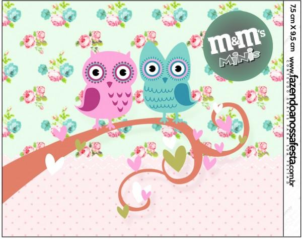 Rótulo Mini M&M Corujinha Vintage Rosa e Verde