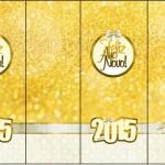 Rótulo Nescauzinho Ano Novo 2015