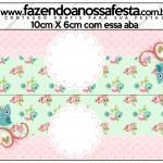 Saquinho de Balas Corujinha Vintage Rosa e Verde