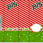 Bis Fundo Natal Vermelho e Verde