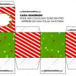 Caixa Bis Fundo Natal Vermelho e Verde