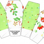 Caixa China in Box Fundo Natal Verde e Branco