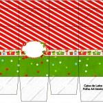 Caixa de Leite Fundo Natal Vermelho e Verde