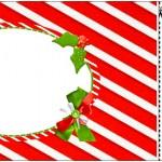 Convite Ingresso Fundo Natal Vermelho e Verde