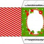Envelope CD DVD Fundo Natal Vermelho e Verde