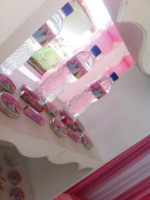 Água e Latinhas Festa Princesas da Disney da Eloiza