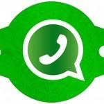 Enfeite Canudinho Whatsapp