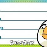 Etiqueta Escolar Personalizada Angry Birds 9