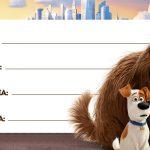Etiquetas Escolar Volta as Aulas Pets 3