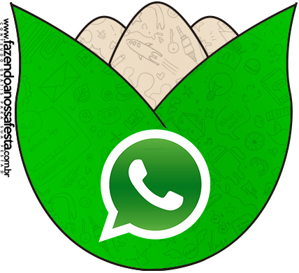 Flor Tulipa Whatsapp