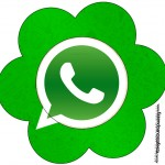 Flor Whatsapp