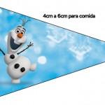 Bandeirinha Sanduiche 3 Olaf Frozen