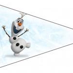 Bandeirinha Sanduiche Olaf Frozen 8