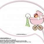 Plaquinhas Divertidas Chá de Bebê Menina 30