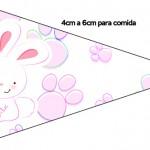 Bandeirinha Sanduiche 5 Páscoa Coelhinho Cute Rosa