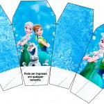 Caixa China in Box Frozen Febre Congelante