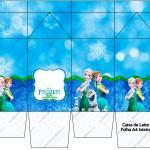 Caixa Leite Frozen Febre Congelante