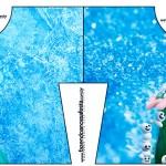 Convite Camisa Frozen Febre Congelante