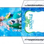 Envelope CD DVD Frozen Febre Congelante