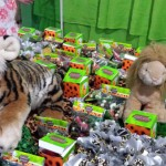 Festa Safari do Matheus Benício