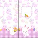 Nescauzinho Páscoa Coelhinho Cute Rosa