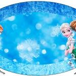Placa Elipse Frozen Febre Congelante