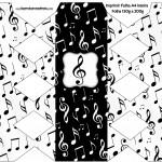 Caixa Bala Notas Musicais
