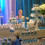 Festa do Frozen da Sofia Longo