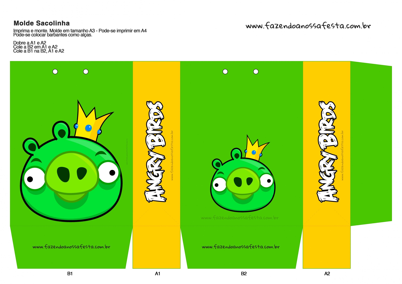 Sacolinha Angry Birds 10