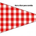 Bandeirinha Sanduiche 2 Fundo Xadrez Vermelho e Poá