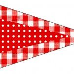 Bandeirinha Sanduiche 3 Fundo Xadrez Vermelho e Poá
