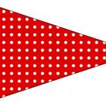 Bandeirinha Sanduiche 5 Fundo Xadrez Vermelho e Poá