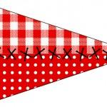 Bandeirinha Sanduiche Fundo Xadrez Vermelho e Poá 2