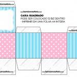 Caixa Bis Azul e Rosa