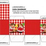 Caixa Bis Kit Festa Junina Vermelho e Branco