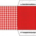 Envelope CD DVD Fundo Xadrez Vermelho e Poá