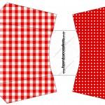 Envelope Fritas Fundo Xadrez Vermelho e Poá