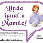 Plaquinhas Divertidas Princesa Sofia 3