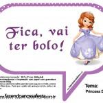 Plaquinhas Divertidas Princesa Sofia 7