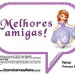 Plaquinhas Divertidas Princesa Sofia 10