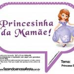 Plaquinhas Divertidas Princesa Sofia 12