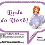 Plaquinhas Divertidas Princesa Sofia 14