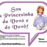 Plaquinhas Divertidas Princesa Sofia 19