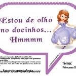 Plaquinhas Divertidas Princesa Sofia 21
