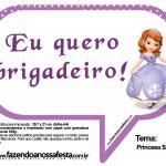 Plaquinhas Divertidas Princesa Sofia 24