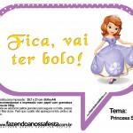 Plaquinhas Divertidas Princesa Sofia 33