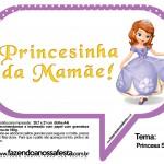 Plaquinhas Divertidas Princesa Sofia 37
