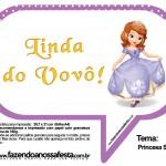 Plaquinhas Divertidas Princesa Sofia 39